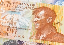 New Zealand dollar money banknote Edmund Hullary close-up